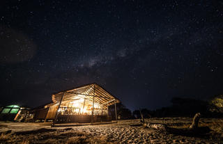 Tranquil Nights Under the Chobe Sky